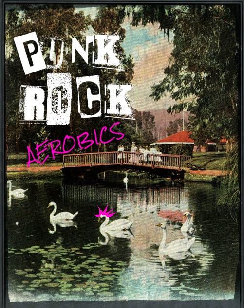 punkRockAerobicsSwansHawkDone