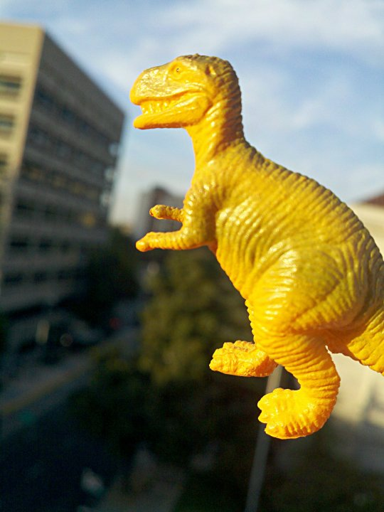 picture of a toy dinosaur